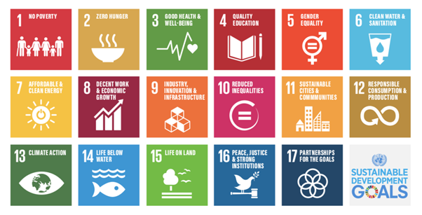 The New Normal and the UN's Sustainable Development Goals